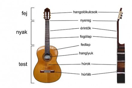 http://upload.wikimedia.org/wikipedia/commons/4/47/Classical_Guitar_labelled_hungarian.jpg